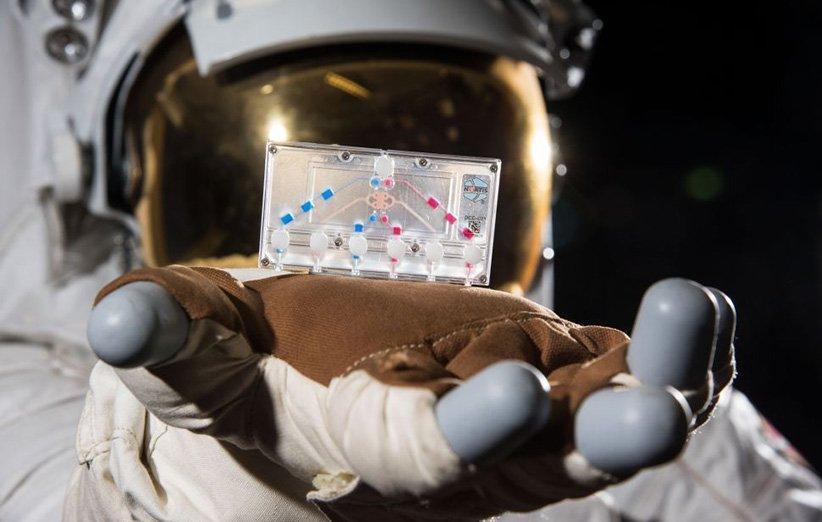 آزمایش های علمی بی نظیری که فضانوردان کرو-1 در فضا انجام خواهند داد