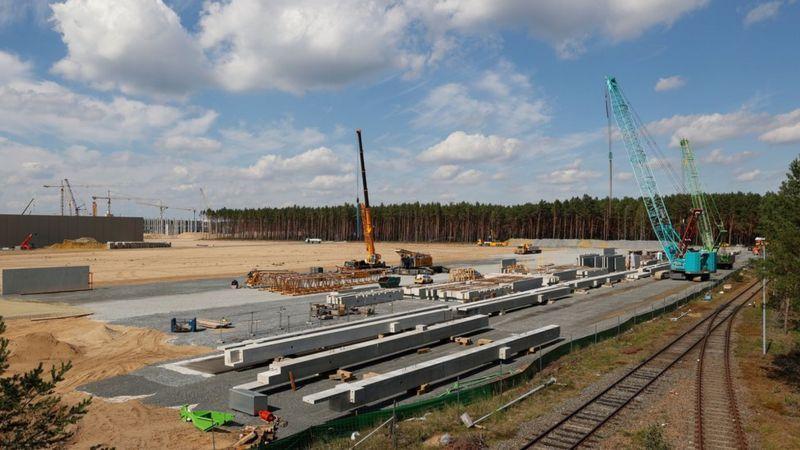 مارمولک&zwnjها؛ مانع حداث کارخانه تسلا در آلمان