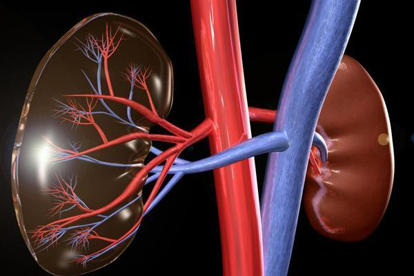 18 علت بالا رفتن کراتین خون و روش های درمانی آن ها